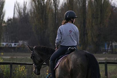 Конно-спортивный клуб в Наро-Фоминске достроят в 2021 году
